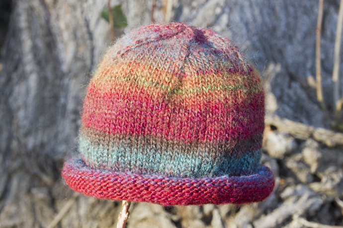 a0eabfef383 Knit roll brim hat